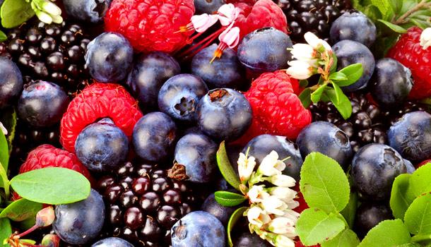 Concurs de selectare a beneficiarilor pentru obținerea cofinanțării în modernizarea sau inființarea pepenierelor de arbuști fructiferi și căpșun
